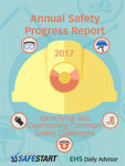annual safety progress report