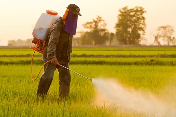 Is This Ruling on Chlorpyrifos the Last Word?