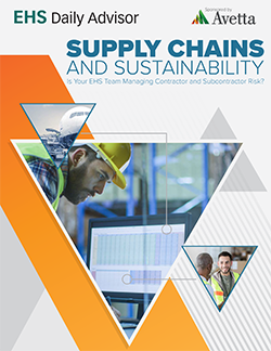 Supply Chains and Sustainability