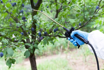 Pesticide spraying and application
