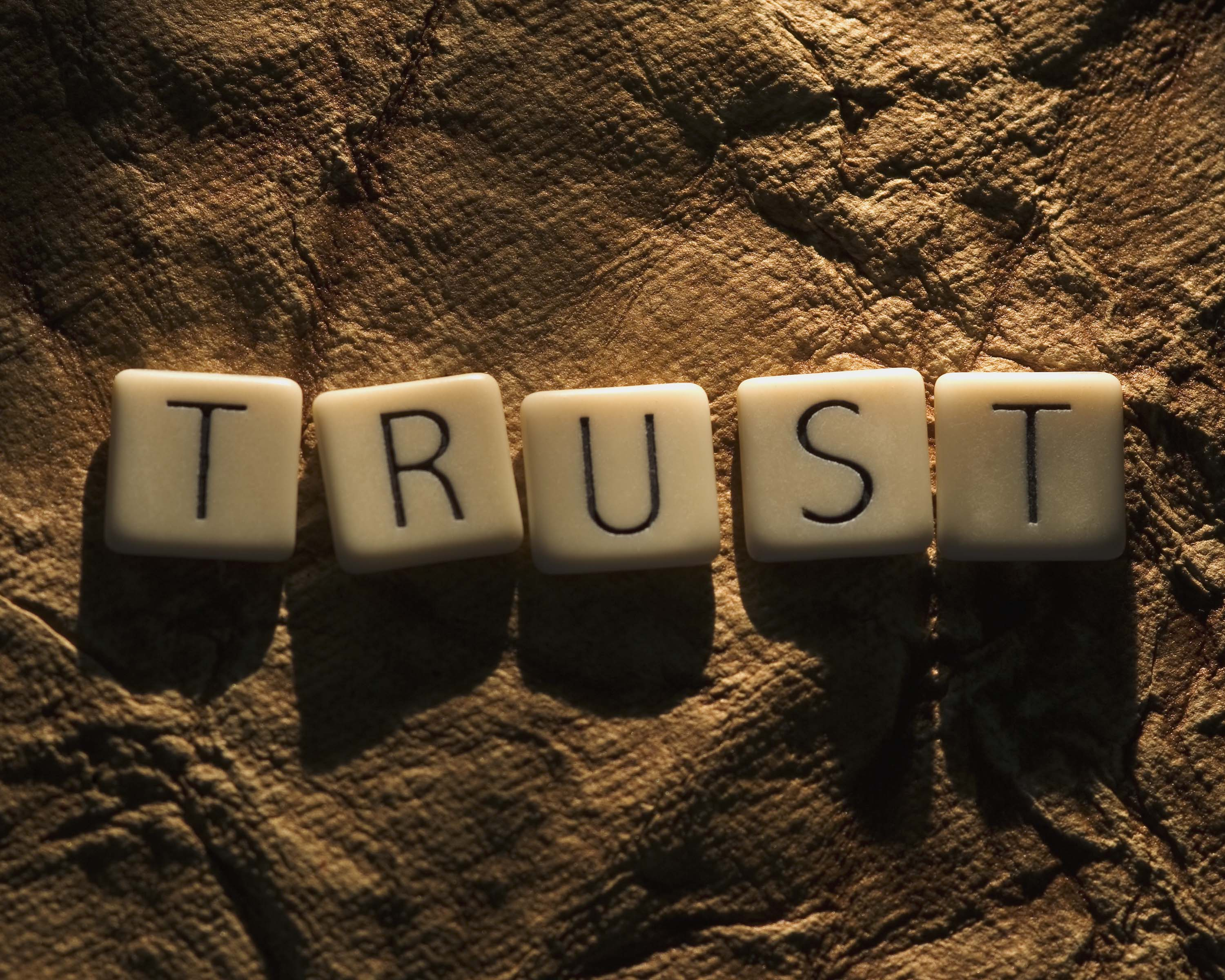 Image result for what is Trust