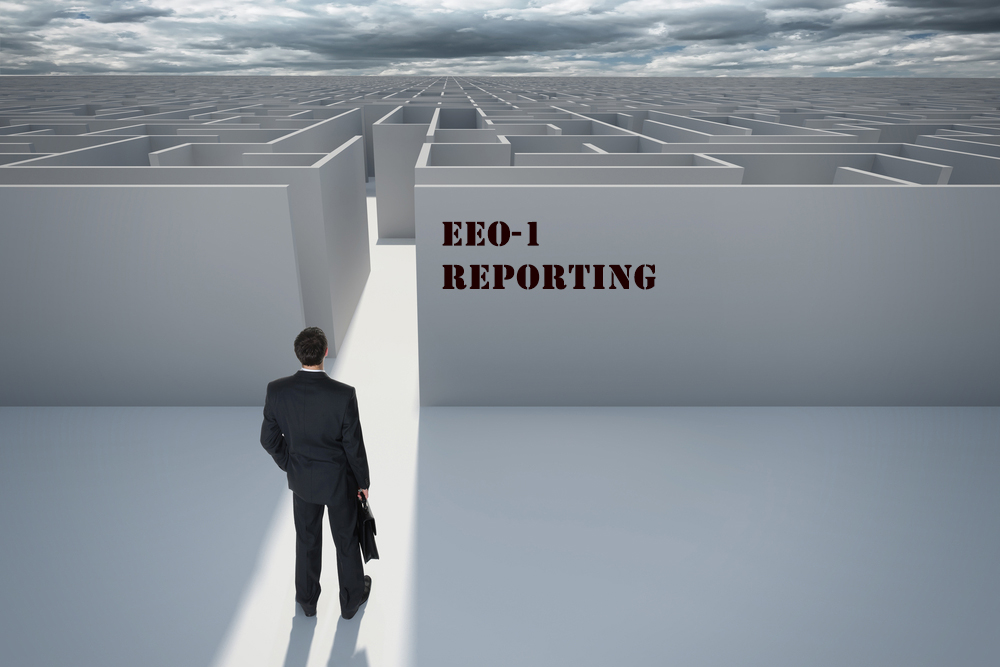 What Is the True Cost of Expanded EEO-1 Reporting? - HR