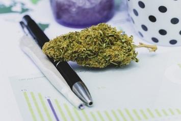 Marijuana at work concept
