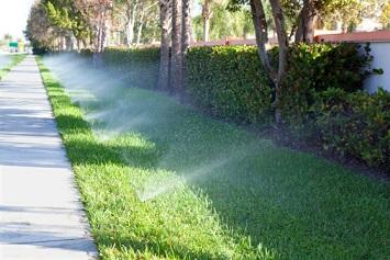 water sprinklers watering the lawn