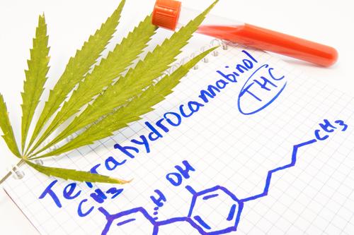 Employment drug testing concept